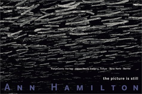 Ann Hamilton: The Picture is Still por Tomoaki Kitagawa