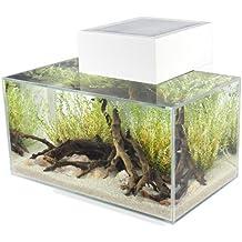 Askoll acquario EDGE AQUARIUM 23L LED WHITE