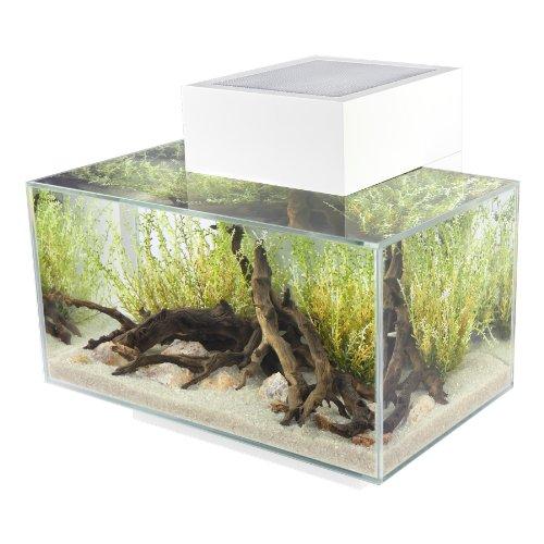 fluval edge i aquarium Fluval Edge I Nanoaquarium mit 23l Fassungsvermögen, weiß