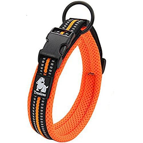 Da Jia Inc Einstellbare 3M reflektierende Hundehalsband Nylon Haustier Kragen einfaches Schnallen-Design atmungsaktives Mesh hund Halsband für kleine/mittelgroße Hunde (Orange, XXS)