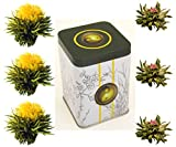 6er-Dose Weißtee-Teeblumen 'Teegarten' - Teerosen / Teeblüten in edler Probier- und Geschenkdose, inkl. Bedienungsanleitung, hochwertigster Tee mit echten Blüten