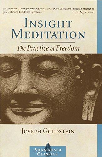 Insight Meditation: A Psychology of Freedom: The Practice of Freedom (Shambhala Classics) por Joseph Goldstein