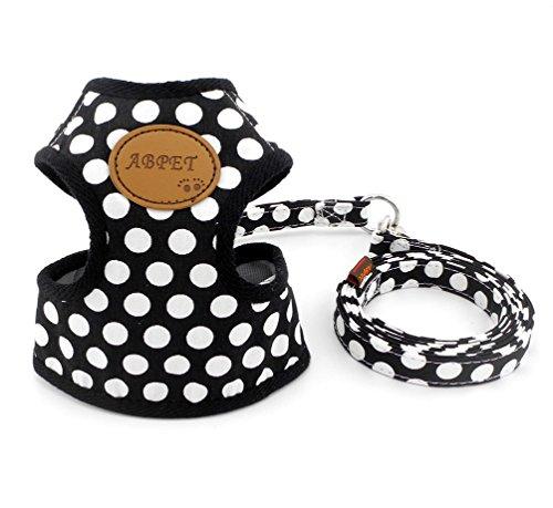 Smalllee_Lucky_store Hundegeschirr mit Leine und weicher Nylon-Netzweste für kleine Haustiere, Katzen-/Hundegeschirr (Welpen Kisten Für Kleine Hunde)