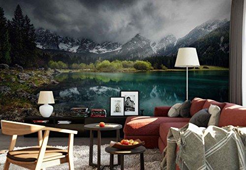 Vlies Fototapete Fotomural - Wandbild - Tapete - Seeufer Berge Gletscher Betrachtung - Thema Seen - XXL - 416cm x 290cm (BxH) - 4 Teilig - Gedrückt auf 130gsm Vlies - 1X-1334270VEXXXXL (Schnee Baum-rock)