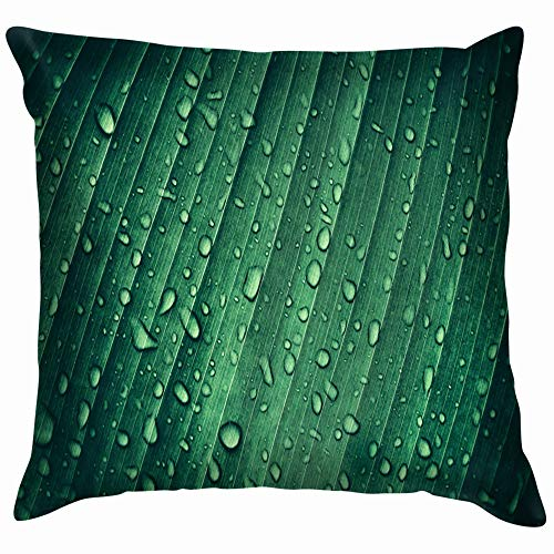 Drop Water On Tropical Banana Palm Nature Soft Cotton Linen Cushion Cover Pillowcases Throw Pillow Decor Pillow Case Home Decor 18X18 Inch -