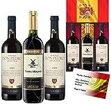 100% Viva Espana Weingeschenkset Spanien im edlen Goldnetz Qualitätsweine mit spanischer Flagge 3 Flaschen Weingeschenk Geburtstag