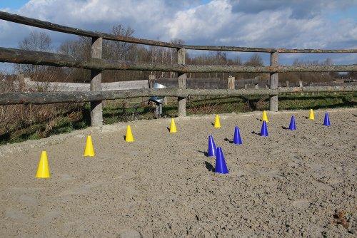Das HAEST Reitsport Set - 10 Blaue und 10 Gelbe bruchfeste Hütchen mit Tragetasche -