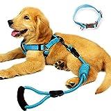 yusenpet Hund Leine Geschirr Set mit Halsband & schwer Pflicht Denim Hund Leine Halsband für kleine, mittelgroße und große Hunde, ideal für Hund Tägliche Training Walking Running