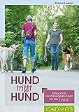 Hund trifft Hund: Endspannte Hundebegegnungen an der Leine (Haltung und Erziehung)