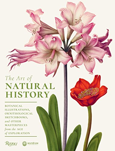 The Art of Natural History: Botanical Illustrations, Ornithological Drawings, and Other Masterpieces from  the Age of Exploration - Fine-art-tier-artwork