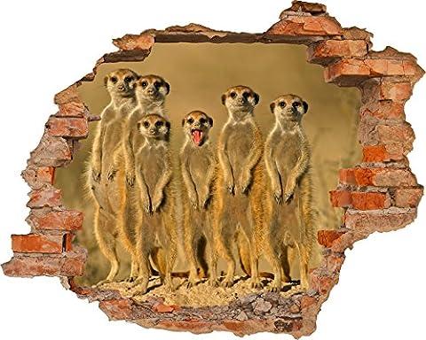 Fototapete 3D Bild Tapete Loch in der Wand Erdmännchen beobachten Savanne wilde Tiere Timon