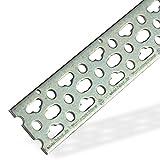 Haas 3864 Montageschiene Montageplatte 50x3x2000 mm 200cm 2m Lochschiene Installationsschiene Stahl verzinkt für Deckenwinkel Wandscheiben