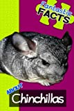 Fantastic Facts About Chinchillas: Illustrated Fun Learning for Kids: Volume 1