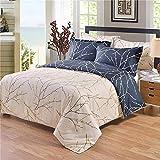 Bonner Bettwäsche Printed Stripe Quilt Bettbezug-Set-3-teilig-Komfortable, Atmungsaktiv, Weich und Extrem Langlebig-Hotel & Schlafzimmer Tröster Sets,B,Twin