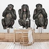 Vliestapete Premium–Drei Weisen Affen–Wandbild breit