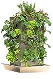 KUBI TTG Maxi Edelstahl Hochbeet mit Kompostierung, Wasserspeicher, Schneckenkante und vertikalem Bio Anbau