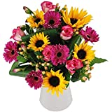 Clare Florist Sunny Smiles Fresh Flower Bouquet - Fresh Sunflowers, Pink Germinis and Pink Roses Hand Arranged by Expert Florists