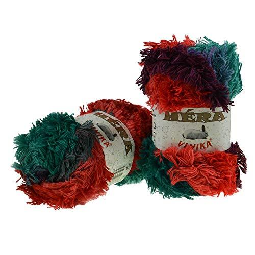 maDDma ® 100g Fransen-Wolle Hera Strickgarn Frasengarn Farbverlauf Strickwolle Farbwahl, Farbe:806 -