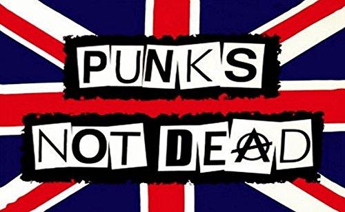 Punks Not Dead Flagge 5ft x 3ft groß-100% Polyester-Metall Ösen-doppelt genäht - Polyester-rocker