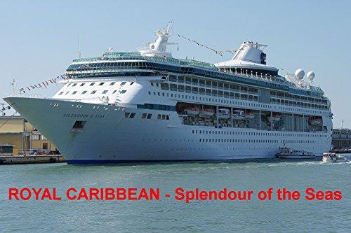 khlschrankmagnet-kreuzfahrtschiff-splendour-of-the-seas-royal-caribbean-9cm-x-6cm-jumbo