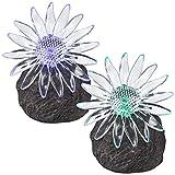 2er Set Solar Außenleuchte Garten LED Farbwechsler Kunststoff Stein mit Blume...