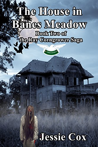 The House in Banes Meadow (Ray Corngrower Series Book 2) (English Edition)