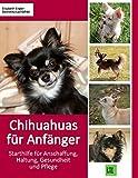 Chihuahuas für Anfänger: Starthilfe für Anschaffung, Haltung, Gesundheit und Pflege (compbook pets)