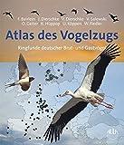 Atlas des Vogelzugs: Ringfunde deutscher Brut- und Gastvögel - Franz Bairlein