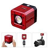 fotowelt 20M Wasserdicht COB LED Videoleuchte Tauchen Camping Beleuchtung Wasserdicht 20m für DSLR, Digitalkamera, Drohne und Action Camera 8W (Rot)