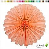 1 Papierfächer 35cm ( apricot 714 ) / Deko Papier Fächer Rosetten Blumen Raumdeko Papierrosetten Hängedeko