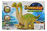 2Head Dinosaur Born Egg Toys Walking and Laying Eggs with Dinosaur Sounds Shakes
