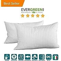 Evergreenweb - Occasione! Coppia Cuscini Fiocco Memory, ottimo per dolori cervicali, tessuto traspirante, 100% memory 42x72 - Guanciale modello saponetta, cuscino per il collo, adatto a tutti i materassi e letti