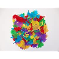 250+ Assorted Coloured Feathers Art Craft Collage Hats Costume Millinery