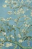 Amandier en fleurs, van Gogh: Carnet ligne, 160 pages, dimensions: 15.24 x 22.86 cm, Feuillete