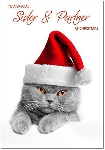 Sister & partner Christmas di gatto con cappello di Babbo Natale–dimensione media