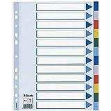 LEITZ blanches Registre plastique (Polypropylène, A4, 12feuilles) Bleu clair 12 Taben Hellblau/Farbig