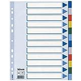 Leitz 15262 Plastikregister, A4, Polyproplyen, 12 Blatt mit farbigen Taben, hellblau (2er Pack)