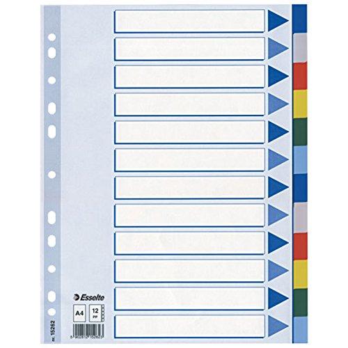 leitz-15262-plastikregister-a4-polyproplyen-12-blatt-mit-farbigen-taben-hellblau-10er-pack