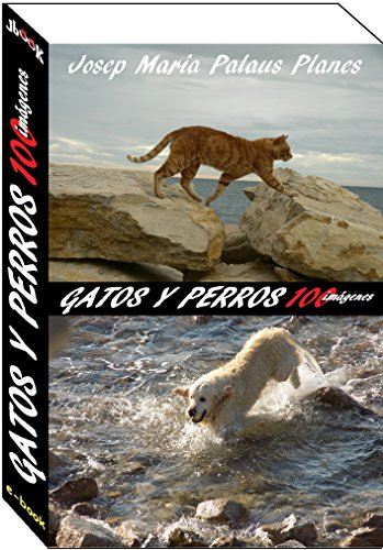 gatos y perros (100 imágenes)