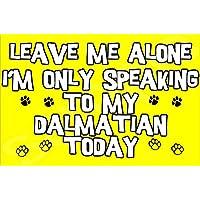 Déjame en paz sólo voy a hablar con mi perro dálmata hoy - Jumbo de imán/regalo