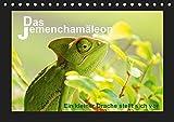 Das Jemenchamäleon (Tischkalender 2019 DIN A5 quer): Ein kleiner Drache stellt sich vor (Monatskalender, 14 Seiten ) (CALVENDO Tiere)