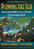 Plowing the Sea: Nurturing the Hidden Sources of Growth in the Developing World