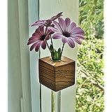 Fenstervase Zebrano Blumenvase Glasvase Holzvase