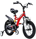Royalbaby Unisex Youth Flybear- Dual Suspension Girl's Boy's Freestyle Kids Children Child Bike