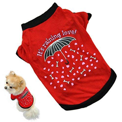 Haustier Kleidung,WINWINTOM Haustier-Welpen-kleine Hundekatze-Haustier-Kleidung-Weste-T-Shirt Kleid (S)