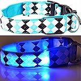LEUCHTENDES Hunde-Halsband, Größe: L (45-52cm / 2,5cm breit), BLAU KARO-Design, mit Klickverschluß. LED's leuchten und blinken im Dunkeln.