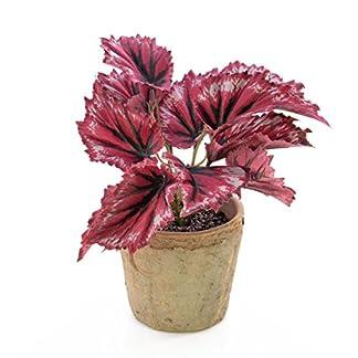 artplants.de Rama de Begonia Benita en Maceta, 12 Hojas, Rojo, 22cm – Flor Decorativa – Ramificación sintética