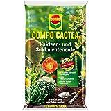Compo 1123102004, COMPO CACTEA Kakteen Sukkulentenerde Hochwertige Spezialerde für alle Kakteenar