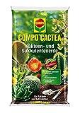 COMPO CACTEA® Kakteen- und Sukkulentenerde, hochwertige Spezialerde für alle Kakteenarten und dickblättrige Pflanzen, 10 L