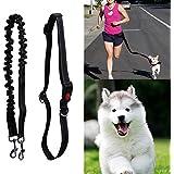 Rrimin Nylon Belt Pet Dog Traction Rope Double Head Or Running Leash Adjustable Training Dog Harness Collar Lead
